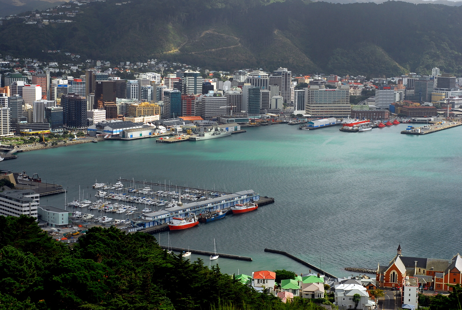 Are you willing to take a tour in Wellington?