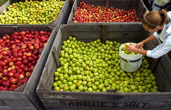 National Apple Harvest Festival, Arendtsville, Pennsylvania