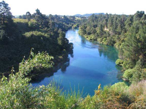 Waikato, North Island, New Zealand
