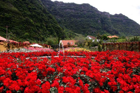 Madeira Flower Festival, Madeira, Portugal