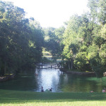 Doing It Naturally: Enjoying Orlando Without the Theme Parks