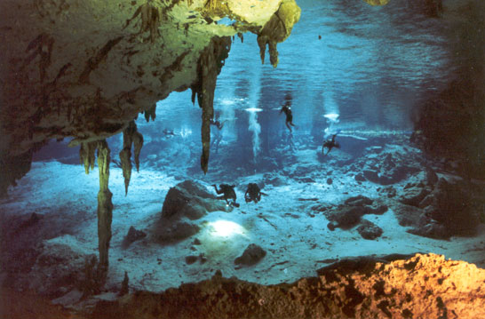 Searching the Cenotes