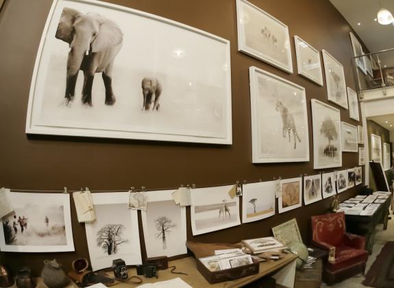 Galleria Gibello