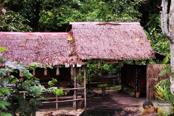 Visit the Penan Tribe