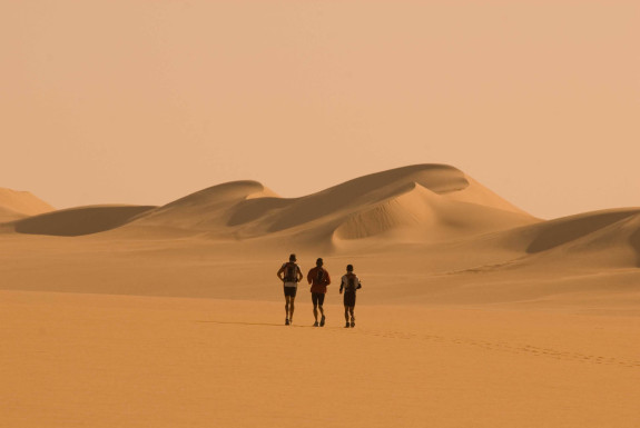 Set Out in the Sahara Desert