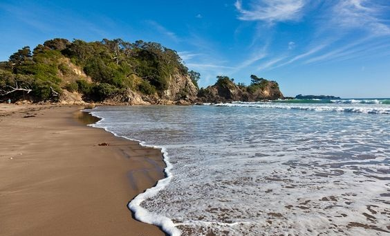 Sandy bay new zealand