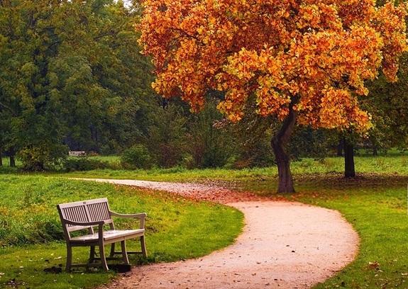 Pick a Park
