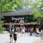 Top 10 Must Visit Zoo in the World in 2014