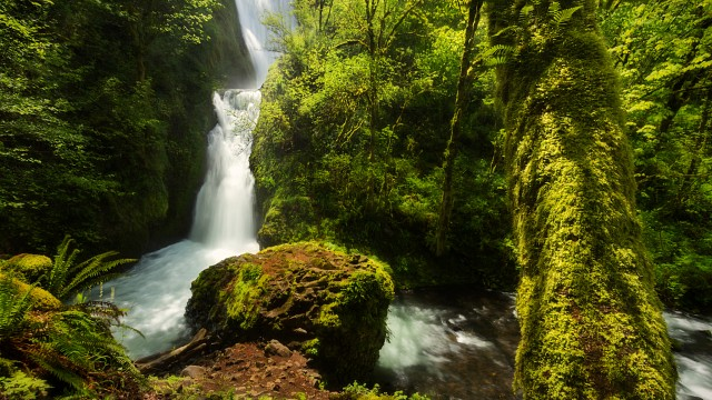 Oneonta Gorge, Bridal Veil, Oregon
